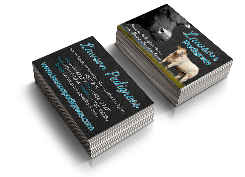 Dec Lawson Business Cards