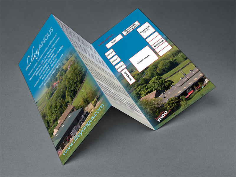 Liley leaflet