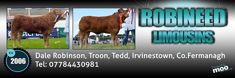 May Robineed banner