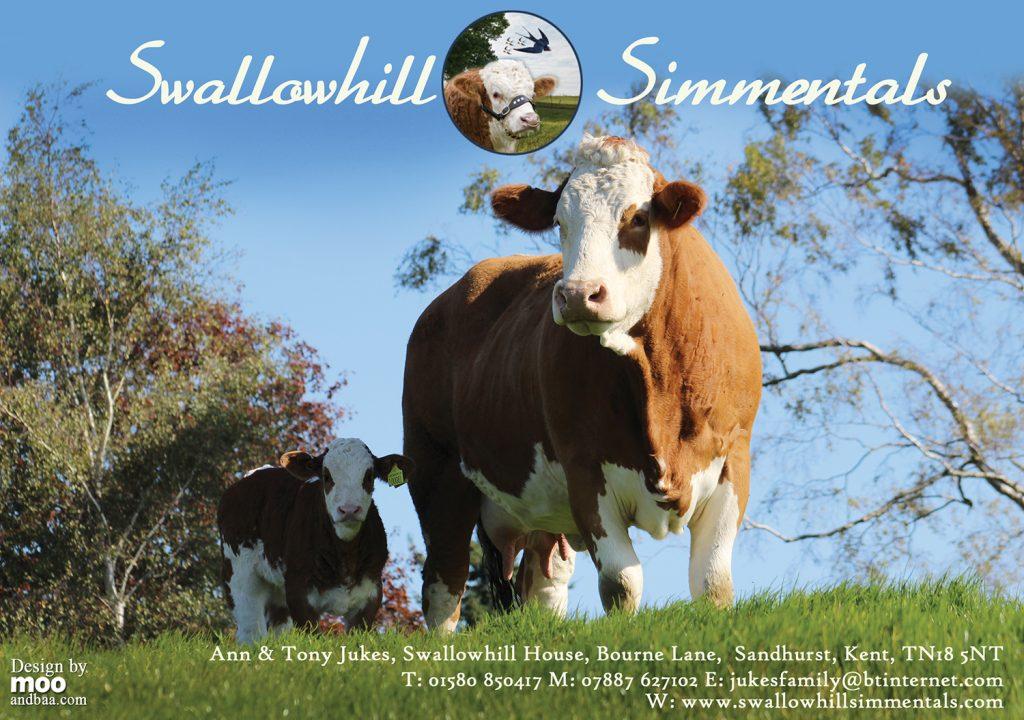 Swallowhill 2016